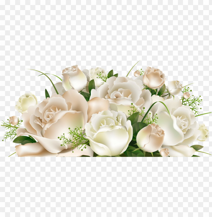 Download Transparent Background White Roses Png Images Background