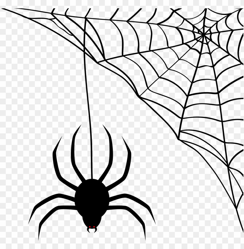Vector Aranha E Teia Hallowee Png Image With Transparent