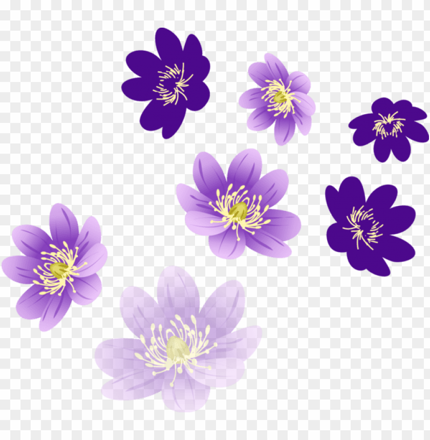 Vector Flower Png Flower Png For Photosho Png Image With