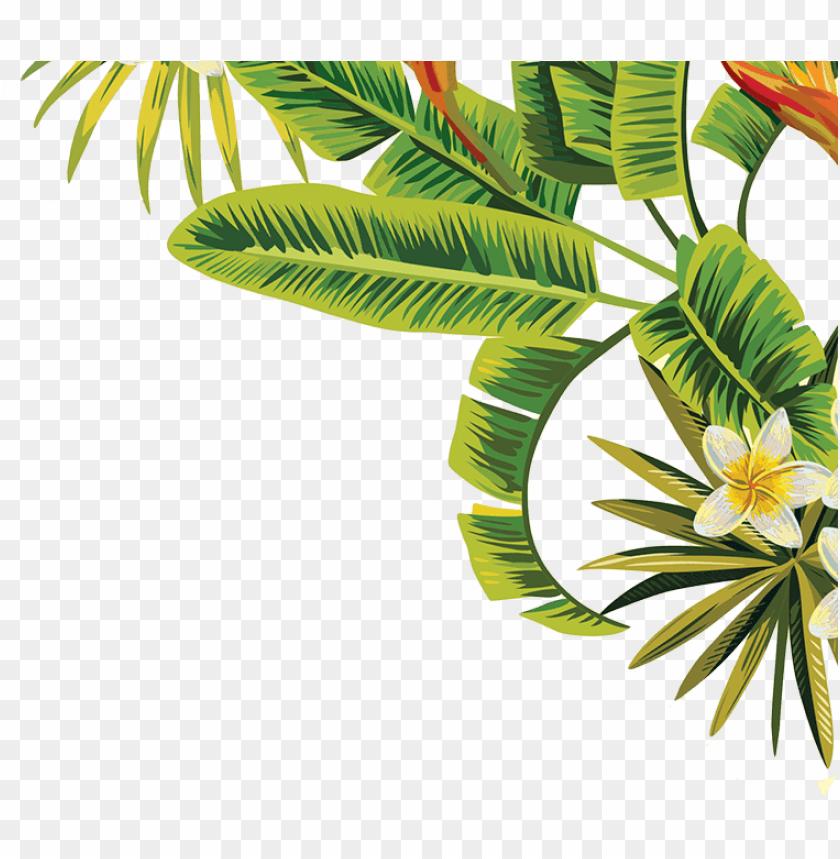 free PNG visit - transparent tropical leaves PNG image with transparent background PNG images transparent