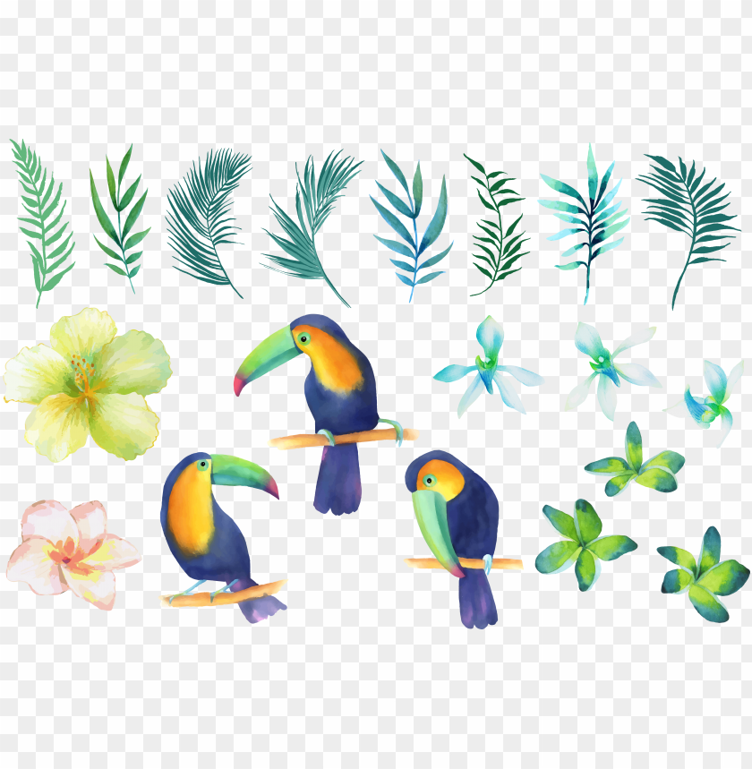 free PNG watercolor painting PNG image with transparent background PNG images transparent