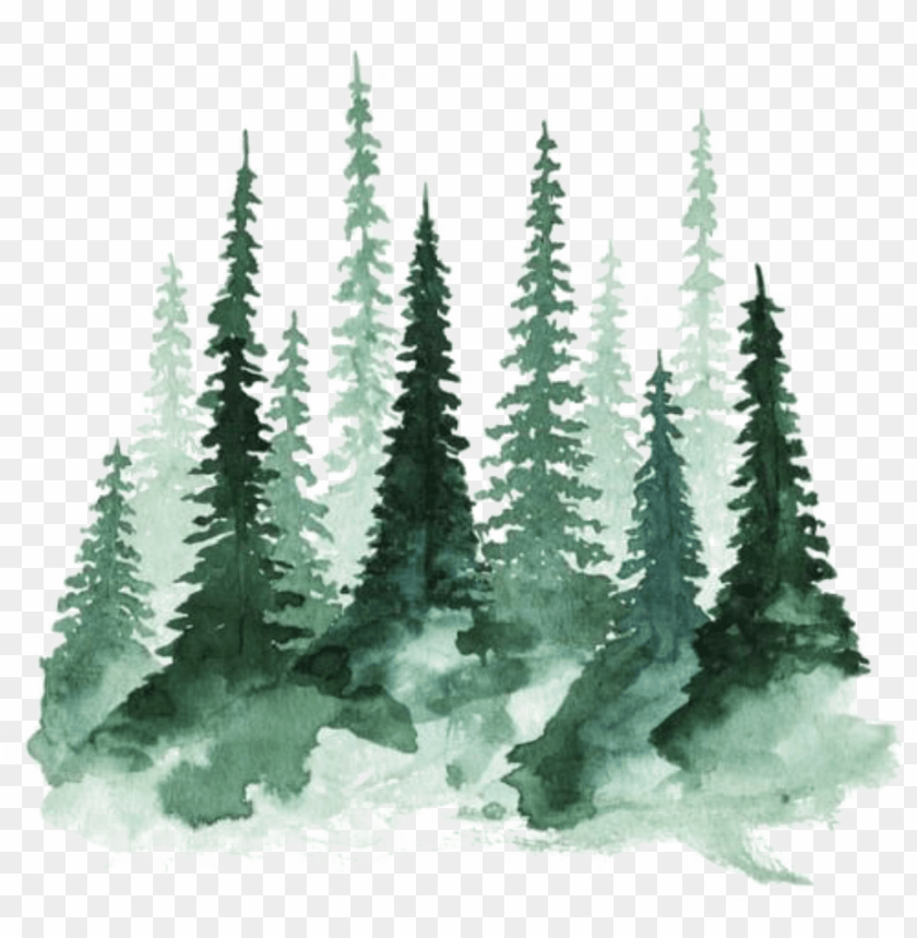 Watercolor Trees Png Image With Transparent Background Toppng