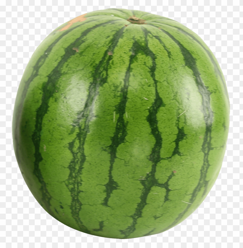 Watermelon png - Free PNG Images | TOPpng