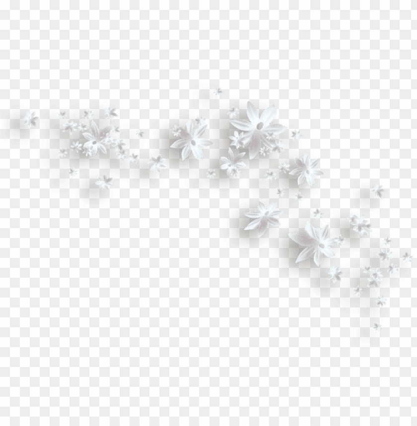 Download White Flowers Decorative Clipart Png Photo Toppng