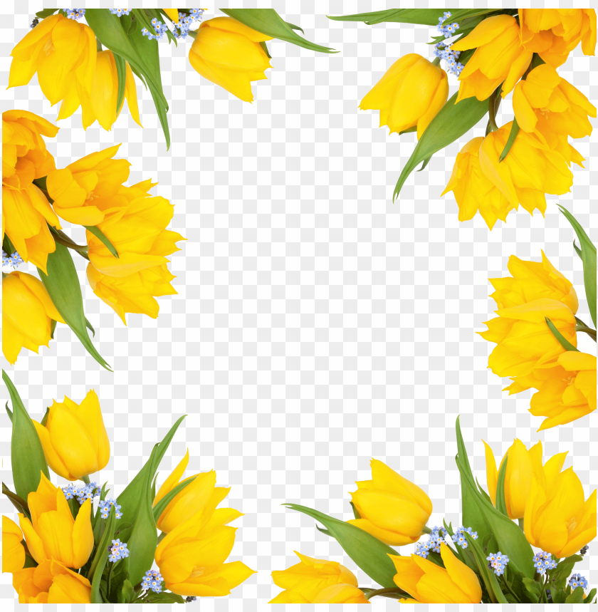 free PNG yellow flower border png - leezone flower printing cotton velvet square throw PNG image with transparent background PNG images transparent