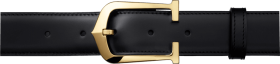 belt with gold color buckles