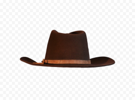 cowboy hat png pic