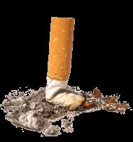 Crushed Cigarette