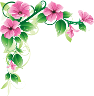 flowers borders high-quality png