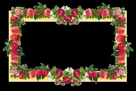 flowers borders s