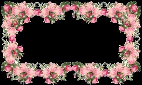 flowers borders transparent