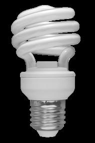 Economy White Bulb lamp