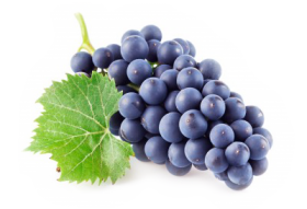 grape png