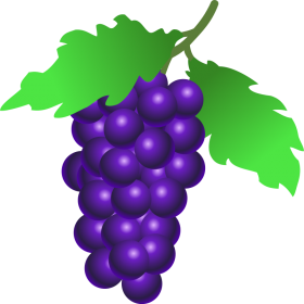 grapes clip art png