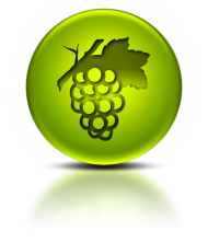 grapes icon png