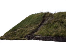 hill with grass