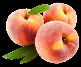 peach fruits with leaf