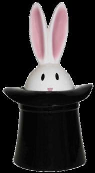 rabbit hat  image