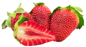 strawberries with leaf and sliced