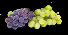 transparent grapes png