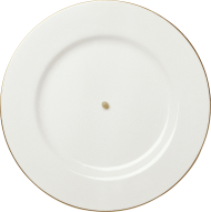 white plate with golden frame