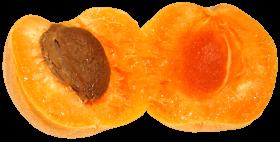 Apricot PNG images transparent
