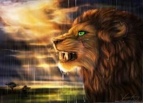free PNG art, goldenphoenix100, lion, predator, pro, rain, savannah, sun, wild cat wallpaper background best stock photos PNG images transparent