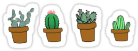 Download Cactus Hipster Drawing Stickers By Youtuber Club Stickers Tumblr Cactus Png Free Png Images Toppng