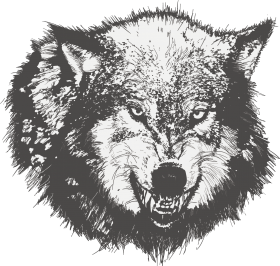 Download Dog Drawing Black Wolf Sketch Painted Transprent Wolf Angry Face Vector Png Free Png Images Toppng