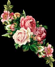 each flower clipart floral swag - flowers vintage illustration PNG images transparent