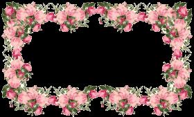 flowers pink frame PNG images transparent
