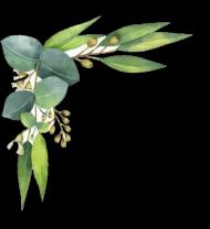 ftestickers watercolor leaves corner border - watercolor leaf border PNG images transparent