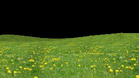 grass download png PNG images transparent