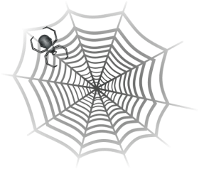 gray spider in web PNG images transparent