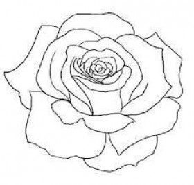 Tags Rose Tattoo Outline Toppng