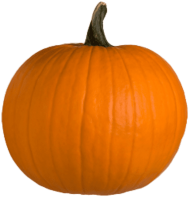 pumpkin PNG images transparent
