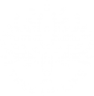 tree of life - heriter cafè PNG images transparent