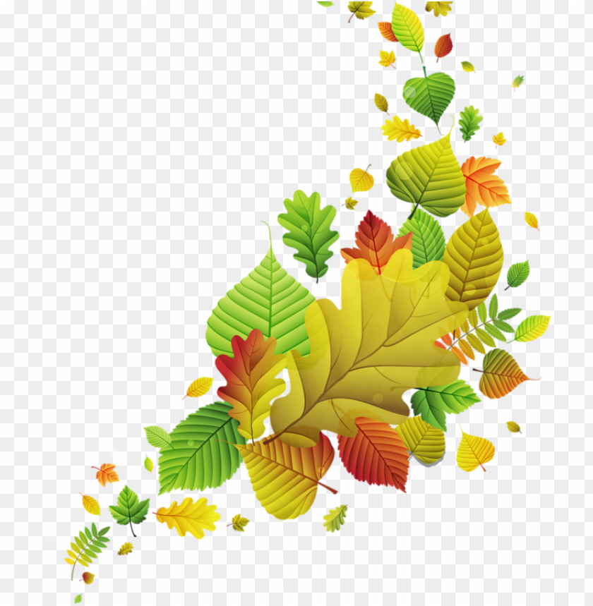 free PNG 0 b2ad1 9062393 xl - vector graphics PNG image with transparent background PNG images transparent