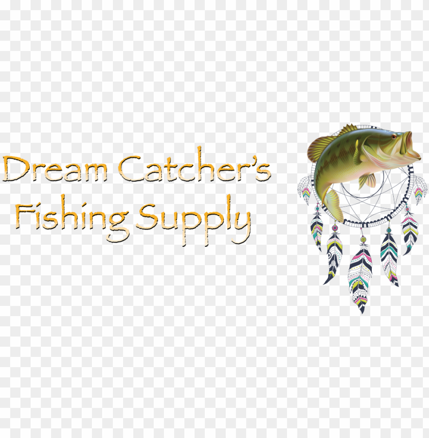 10 reasons dream catcher's is the best fishing store - dream