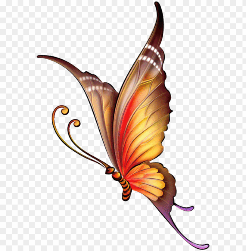 free PNG 110795351 large 0 a3e96 558d1632 xl butterfly pattern, - butterfly images for drawing with colour PNG image with transparent background PNG images transparent