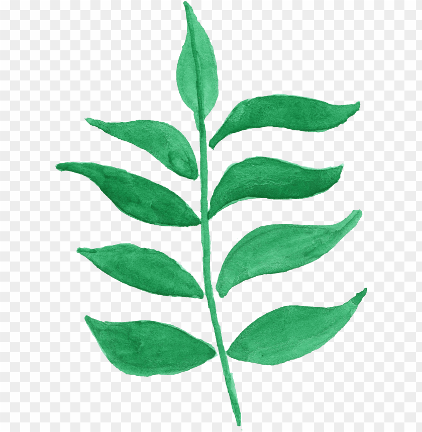 free PNG 12 watercolor leaf vol - green flowers transparent watercolor PNG image with transparent background PNG images transparent