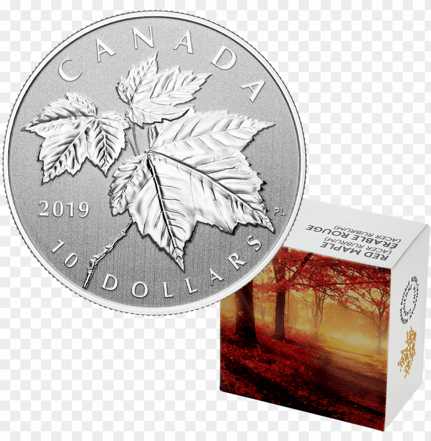 free PNG 2019 1/2 oz canada maple leaf - silver coi PNG image with transparent background PNG images transparent