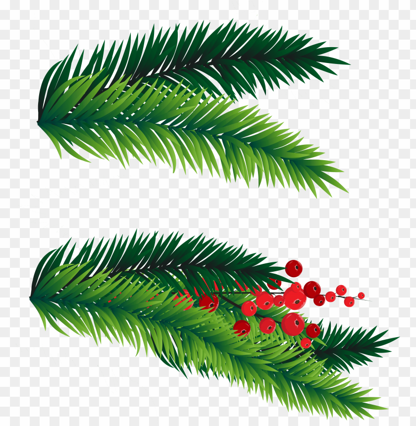 free PNG 28 collection of christmas tree branches clipart - christmas tree branch vector PNG image with transparent background PNG images transparent