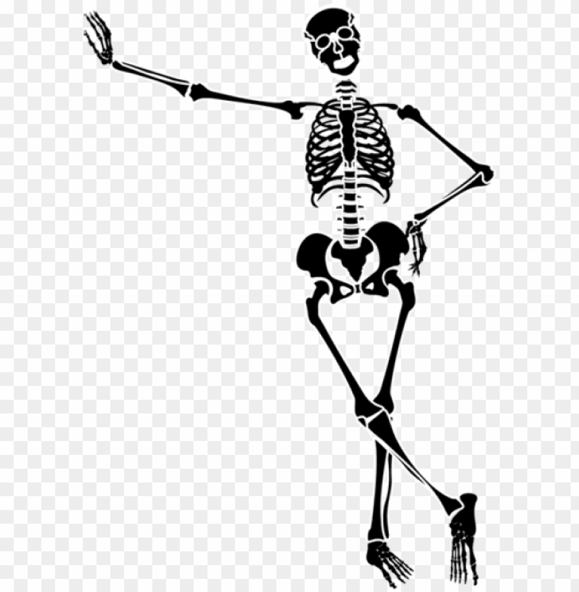 free PNG 28 collection of halloween dancing skeleton clipart - skeleton art transparent background PNG image with transparent background PNG images transparent