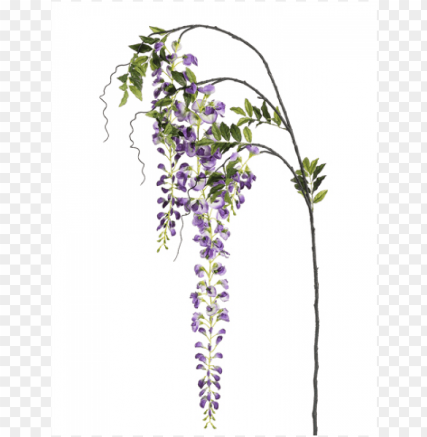 """free PNG 5"""" japanese wisteria spray two tone lavender - silk plants direct japanese wisteria spray - lavender PNG image with transparent background PNG images transparent"""