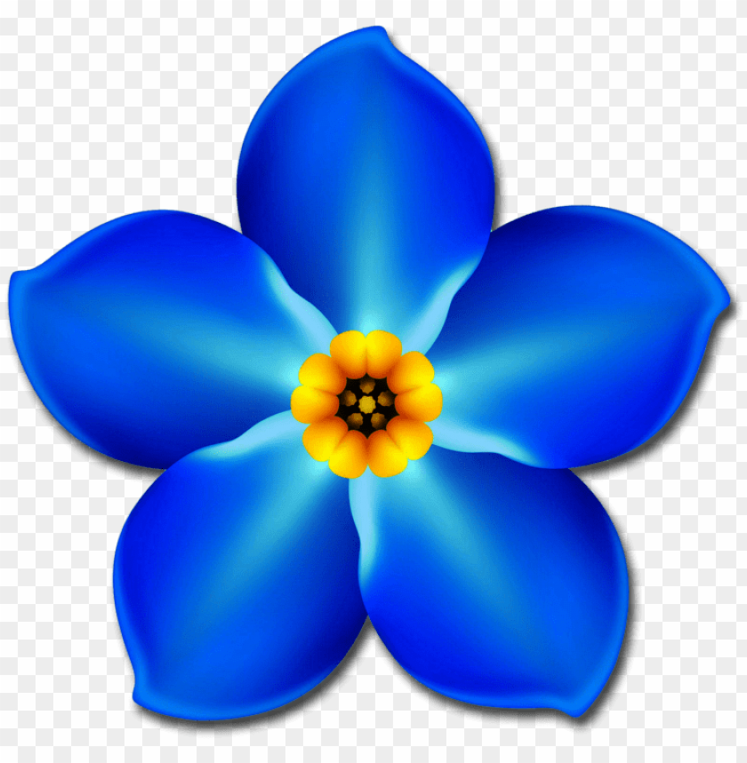 free PNG 774 x 784 3 - one forget me not flower PNG image with transparent background PNG images transparent