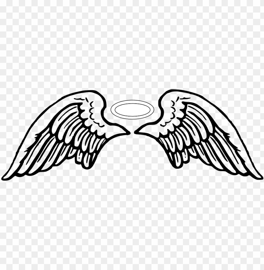 960 Roblox Free Clipart 960 X 480 24 Angel Wings Vector Png Image With Transparent Background Toppng
