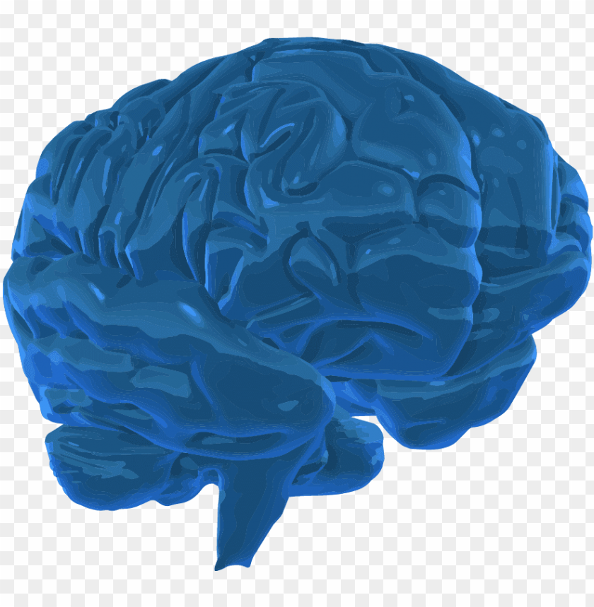 free PNG a 3d graphic image of the human brain - blue 3 d brain PNG image with transparent background PNG images transparent