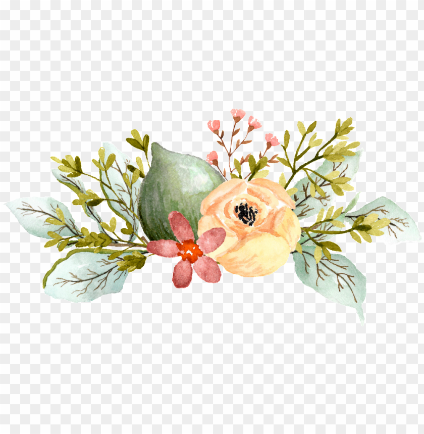 free PNG acuarela pintada a mano de dibujos animados elegante - watercolor elegant flowers PNG image with transparent background PNG images transparent