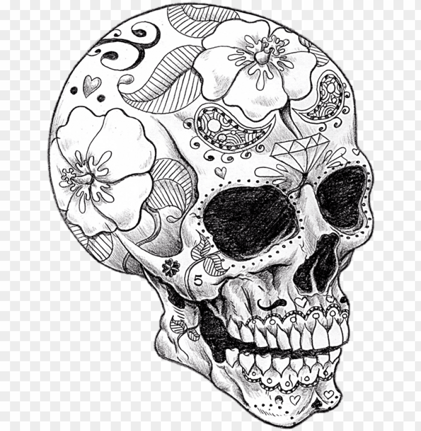 Adult Coloring Pages Skull Png Image With Transparent Background Toppng